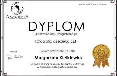 DYPLOM_FDI_kletkewicz