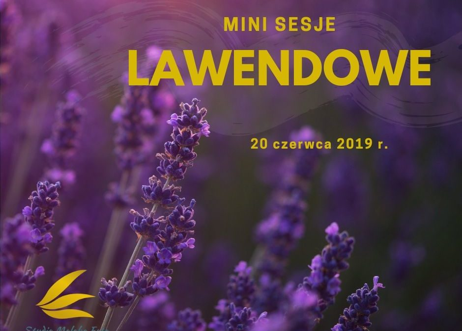 Lawendowe Mini Sesje