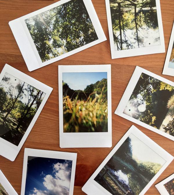 Czas na porządki… w fotografiach
